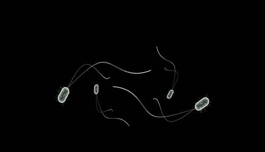 Почему нарушена микрофлора влагалища