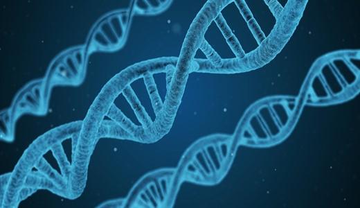 Генетический анализ при беременности