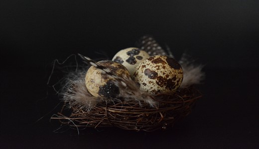 Можно ли беременным яйца