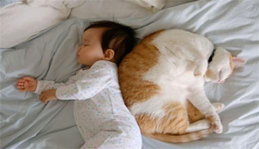 Новорожденные дети и домашние животные