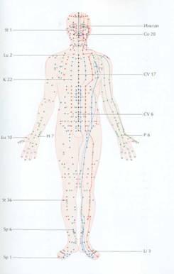 Меридианы на теле человека