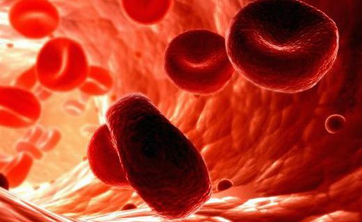 что значит повышенный гемоглобин
