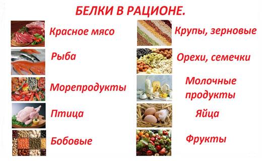 белки при приеме пищи
