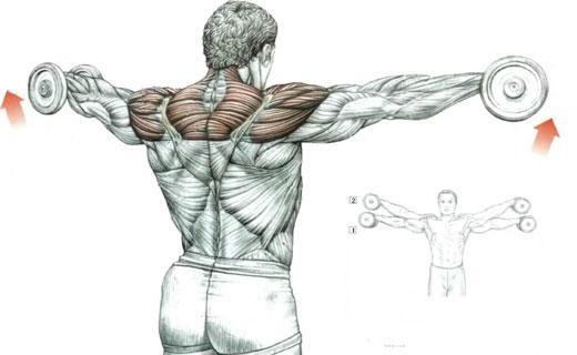 как накачать плечи мужчине