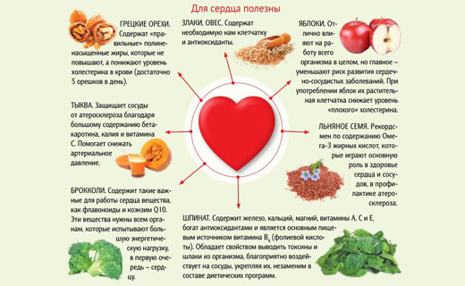 основы питания для укрепления сердечной мышцы