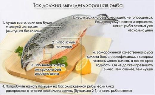 советы по выбору рыбы