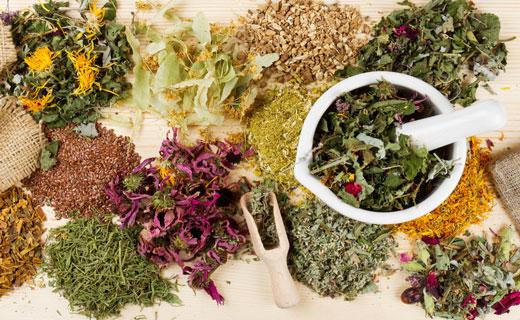 травы для готовки