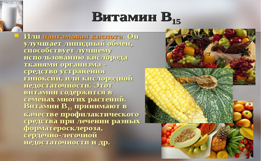 в какиё продуктаё витамин б12 это специальная одежда