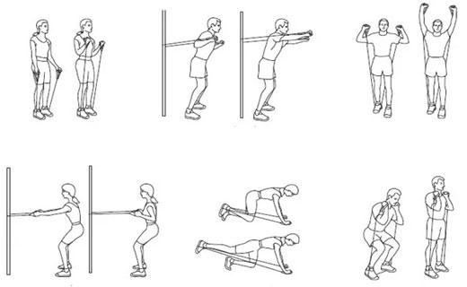 вопросы по силовым упражнениям
