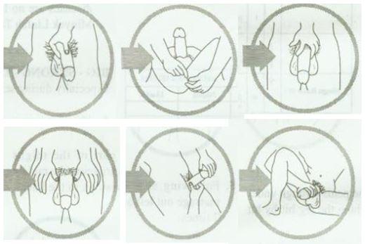 Инструкция пошагово: массаж полового члена мужчине