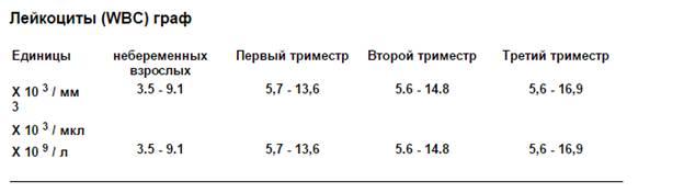 Повышены лейкоциты в крови у беременной в третьем триместре 18