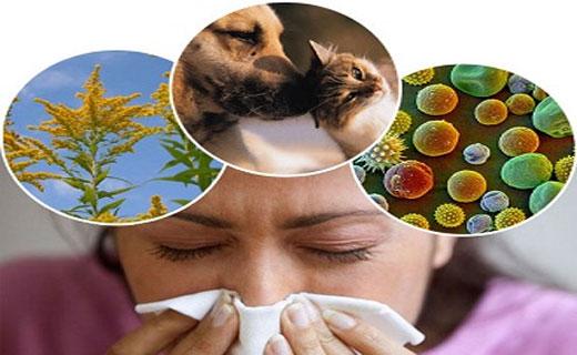Аллергический бронхит симптомы и лечение