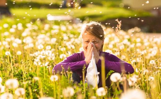 аллергия на одуванчики