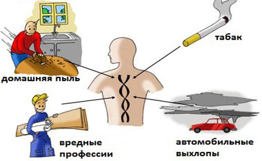 Причины кашля - внешние и внутренние, а также симптомы кашля