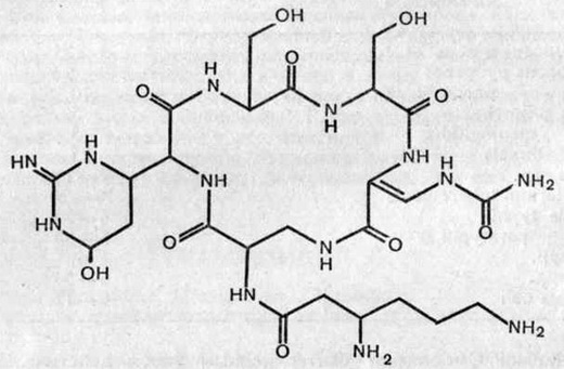 Флоримицин