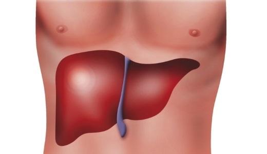 Народные способы лечения гепатита с