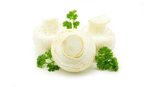 Лечение грибами что такое фунготерапия