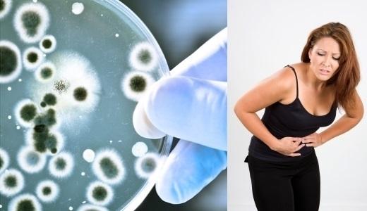 Лечение инфекции мочевых путей народными средствами