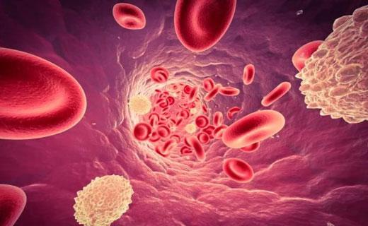 как снизить лейкоциты