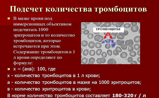 повышенное количество тромбоцитов
