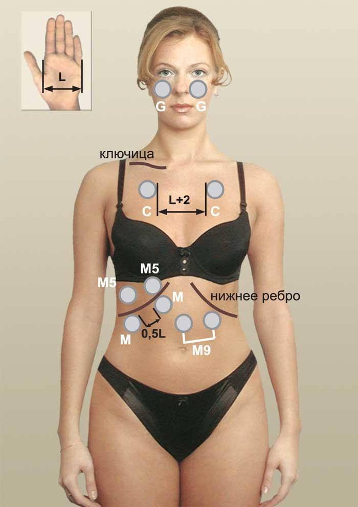 Витафон на передней части тела