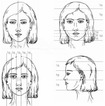 Схемы анализа пропорций лица
