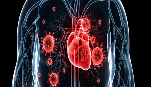 Инфекционный эндокардит у детей лечение и симптомы| Диагностика ...
