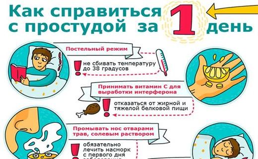Как лечится в домашних условиях от простуды 473