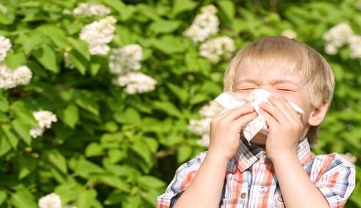 Сезонная аллергия поллиноз