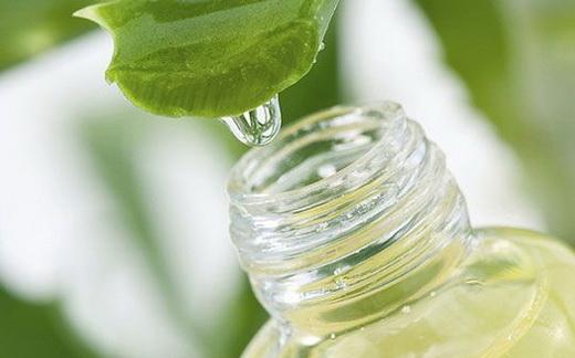 Лечение соком алоэ с маслом