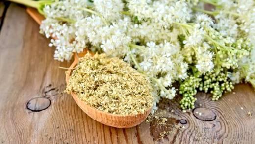 Сухая трава белоголовник