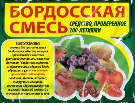 Бордосская жидкость для опрыскивания винограда