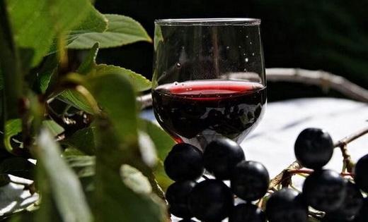 Рецепт настойки на спирту из черноплодной рябины