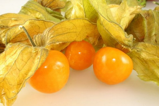 Свойства плодов физалиса