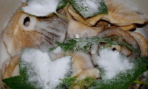 Как засолить грузди холодным способом