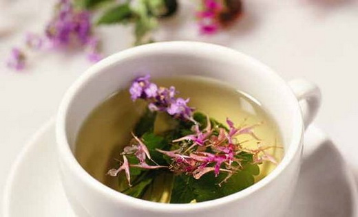 Свойства чая с травой кипрея