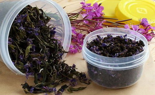 Свойства сушеных цветков иван чая