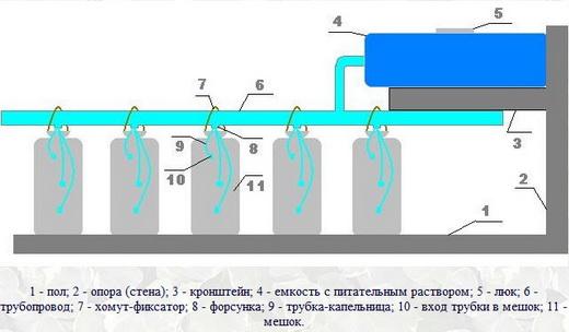 Оросительная система чтобы вырастить клубнику