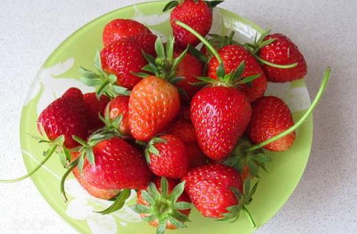 Свойства ягод клубники