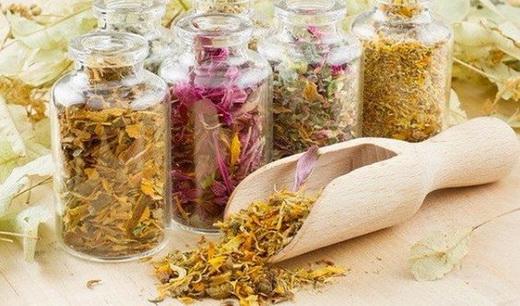 Растение Коровяк - лечебные свойства и противопоказания, фото, Коровяк - применение в народной медицине
