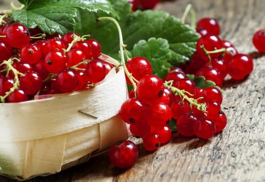 Свойства ягод красной смородины