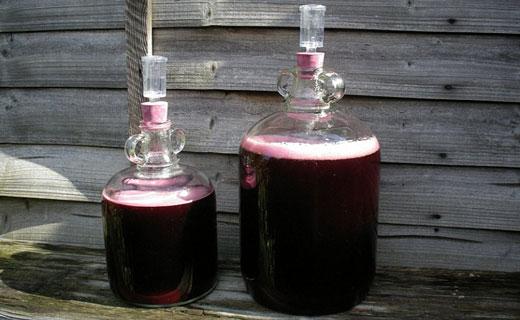 лечебное вино