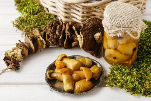 Польза грибов для человека