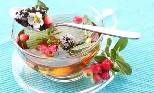 Свойства чая на основе лимонника