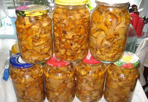 Соленые лисички зиму рецепты фото