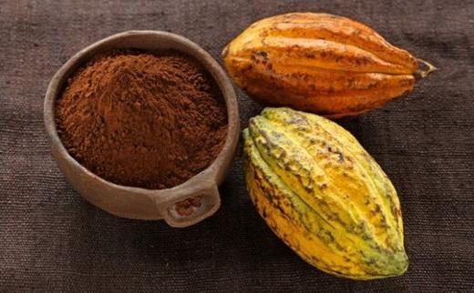 Какао бобы для изготовления масла