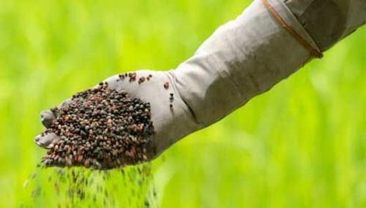 Вносим минеральные удобрения в почву