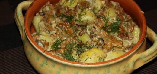 Моховики с картошкой в сметане