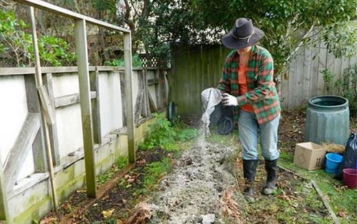 Распространяем удобрение на почве