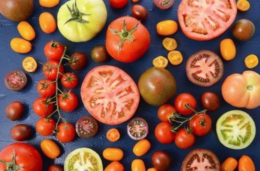 Различные сорта помидор для грунта